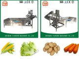 Plantaardige Wasmachine van de Wasmachine van de Komkommer van de Wasmachine van het Fruit van Automacti de Ononderbroken