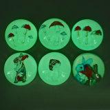 OEM de Creatieve koelkast-Magneet van het Glas van de Douane van de Gift van de Bevordering In het groot
