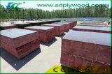 Matériaux de construction du pont WBP contreplaqué marine/Film face contre-plaqué
