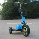 Scooter mobile à mobilité réduite de 500W 3 roues pour handicapés