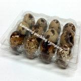 China-Lieferanten-Raum-Plastikwachtel-Ei-Tellersegmente für Verkauf