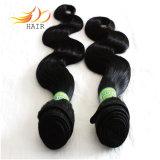 加工されていない7A等級のブラジルのバージンの人間の毛髪のよこ糸