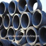 Fait dans les enroulements doux de fil d'acier d'Ungalvanized SAE 1006/1008/1010 de vente entière de la Chine