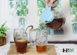 Bottiglia di vetro stabilita dell'acqua del tè del latte della spremuta delle 5 parti con il bello coperchio di plastica