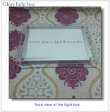 CE aprobada en el techo de cristal colgantes Caja de luz LED de señal