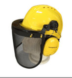 ヘルメットの耳擁護者およびワイヤーマスクを含む安全バイザー