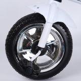 L'OEM a conçu le tricycle Trike de gosses du constructeur