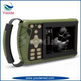 Explorador portable veterinario del ultrasonido del equipamiento médico para los animales
