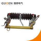 Lâcher le commutateur de découpage de fusible/de tige/interruption de fusible RW11-10 extérieur avec CQC ISO9001