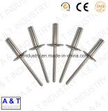 Rivet aveugle en aluminium / acier inoxydable à haute qualité