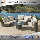 Disposizione dei posti a sedere profonda sezionale buona di Furnir Wf-17092 6PC