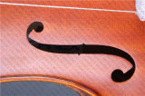 Cello / Middle Grade Cello/ Cello Bow (CLA-5)