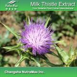 100% натурального молока Thistle извлечения (70%, 80%, 85% Silymarin)