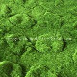 Eco-Friendly falsa artificial Hoja Verde / alfombras de musgo de decoración de la pared