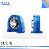 Clouded Bearing Housing, Best Bearing Unit, Pillow Block Bearing