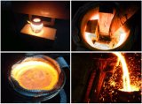 Saleのための安いInduction Melting Furnace