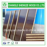 高いGrade God Price 18mm Film Faced Plywood