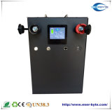 Système de stockage de l'énergie 48V100ah Batterie LiFePO4 Pack avec Victron/ BUS CAN