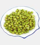 El vendedor caliente conservó los guisantes verdes con la mejor calidad