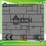 Opruimen van het Cement van de Vezel van de thermische Isolatie het Buiten