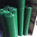 PVC에 의하여 입히는 용접 철망 (담궈지는 최신 담그는 감기)