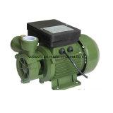 dB 시리즈 저압 각자 순환 수도 펌프