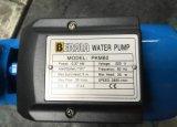 Pkm60 전기 청결한 지상수 펌프, 금관 악기 임펠러 (0.37kw/0.5HP)