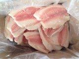 [تيلبيا] شريحة يجمّد سمكة (07)