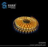 Luce di striscia del LED (NN-560-R/G/B/W/M-12V-C)