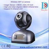 IP-Kamera (DDS-6009IP)