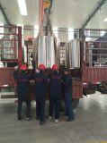 Het huis brouwt de Uitrusting van het Bier, Ketel, moet het MiniBierbrouwen van de Boiler Vat Lauter