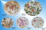Plateau en porcelaine / plaque Hand-Painted