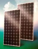 Boleda 태양 전지판 - BLD-72-5M