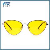 Belles glaces de Sun de lunettes de soleil neuves de modèle