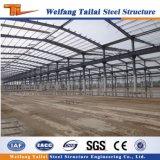 Пакгауз стальной структуры Tlailai Prefab стального здания конструкции