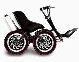 사인 파동 관제사를 가진 250W 500W 1000W E 자전거 허브 모터 장비
