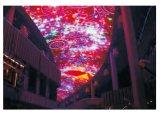 LED適用範囲が広いピクセルスクリーン(S-751)