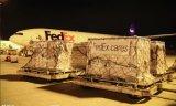 Transporte de carga aérea Shenzhen para a Dinamarca