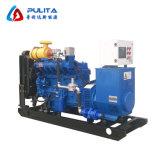 Hohe Leistungsfähigkeit 75 KVA-Biogas Genset für Verkauf