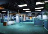 Le SMD3825 66W 600X1200mm des panneaux d'éclairage LED avec UL CE RoHS 5 ans de garantie