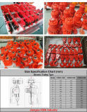 3t G80 cadena de aleación polipasto eléctrico de cadena con colgante