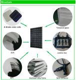 지붕 설치를 위한 고능률 단청 태양 전지판 320W