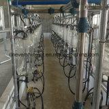 Автоматическая стекло молоко Fishbone дозатора доильном зале 32 места в системе