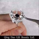 Pallet adesivo del supporto di tazza dell'anello della colla di cristallo di estensione del ciglio di Lilibeautyltd