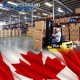 Betrouwbare Oceaan & Overzees die van China aan Canada/Vanvouver/Montreal/Toronto verschepen