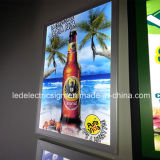 LED Advertisement Display für Beer Sign mit Acrylic Plastic Sign