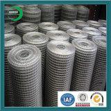 中国の構築のための卸し売り電流を通された溶接された金網は、電流を通された熱い浸された上塗を施してあるエレクトロ金網、溶接された金網を溶接した