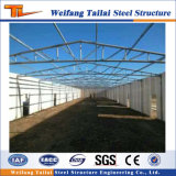 Design and Manufacture Steel Structure Poulty House clouded