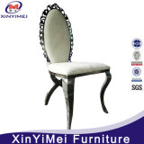 의자를 식사하는 현대 디자인 대중적인 스테인리스