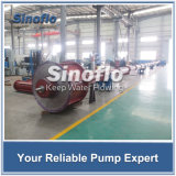 Vertikale Turbine-Pumpe/versenkbare Pumpe